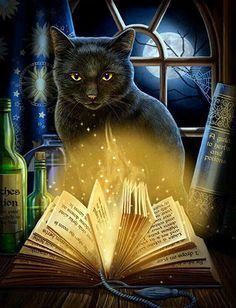 Black Cat Greeting Card by Lisa Parker - Bewitched Moon Spell Kitty Magick Card Crazy Cat Lady, Crazy Cats, I Love Cats, Cute Cats, Black Cat Art, Black Cats, Magic Cat, Photo Chat, Witch Cat