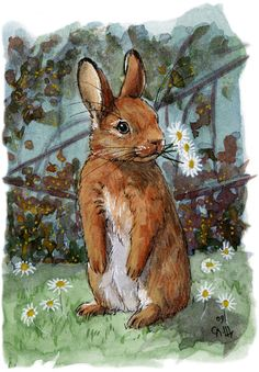 Lovely Rabbits – Daisies For You by Svetlana Ledneva-Schukina - Hase Bunny Painting, Painting & Drawing, Your Paintings, Animal Paintings, Watercolor Animals, Watercolor Art, Rabbit Art, Bunny Rabbit, Bunny Art