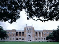 Rice Love!  Rice University offers free courses for all, online