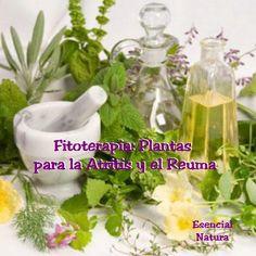 Fitoterapia  Seleccion 26  plantas para la artritis y dolores reumaticos.