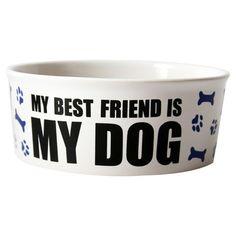 Best Friend Pet Dish at Joss & Main
