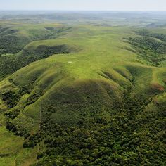 Essa bela foto mostra uma paisagem característica do Pampa, bioma restrito ao Rio Grande do Sul. Ele é marcado pelos campos, planícies e pequenos morros e sua biodiversidade é muito rica. Entre as espécies nativas do bioma estão a ema, o joão-de-barro, o veado-campeiro e o preá. Foto: Zig Koch #photooftheday #igersbrasil #instanature #instagood #nofilter #igdaily #biomasbrasileiros #pampa