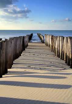 Breakwater on the North-Sea beach at Renesse, Zeeland, The Netherlands, Europe