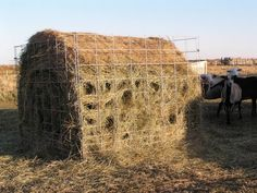 For the last several years, I& been forking hay over the fence to my sheep each day, or putting out a round bale for them to eat free reig. Diy Hay Feeder, Goat Hay Feeder, Feeder Cattle, Hay Feeder For Horses, Horse Feeder, Sheep Fence, Sheep Farm, Livestock Farming, Goat Farming