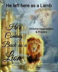 The Lamb of GOD❣ KING of kings and LORD of lords❣