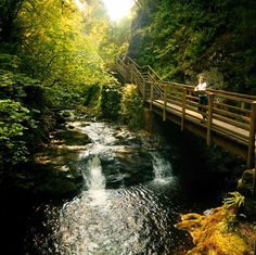 Glenariff Forest Park, County Antrim, Northern Ireland