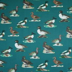 Ducks On Pine Green