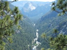 Yosemite National Park Ca.