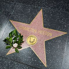 To get a star on the Hollywood Walk of Fame you need to be an icon. And then there are the icon's icons. 👌