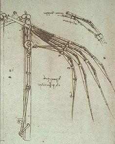 Leonardo da Vinci - Codex Atlanticus, folio 844 - Articulated Wing, study