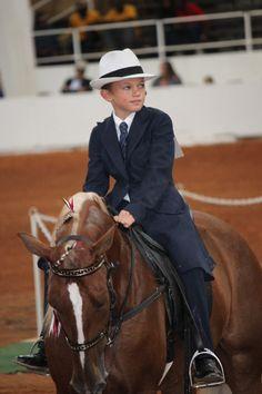 Racking Horse world Celebration 2013