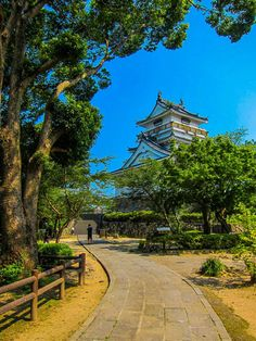 Small Castles, Hidden Beauty, Kyushu, Tokyo Japan, How To Introduce Yourself, Travel Guide, How To Find Out, How To Memorize Things, Sidewalk