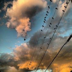 ⛅⚡ Vancouver, Clouds, Sky, Outdoor, Outdoors, Heaven, Outdoor Games, Outdoor Living, Cloud