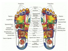 Zone Reiki For Arthritis, Better Sleep, Detox, Weight Loss, Pain Release & More - New Ideas Pediatric Physical Therapy, Occupational Therapy, Physical Education, Special Education, Tight Achilles Tendon, Homemade Reed Diffuser, Foot Chart, Brain Stem, Cleaning