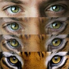 "Jensen IS the ""eye of the tiger""<--- PINNING FOR THAT DESCRIPTION"
