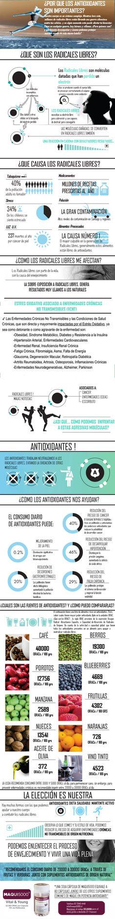 ¿POR QUE SON IMPORTANTES LOS ANTIOXIDANTES ?