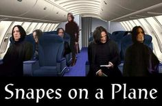 ahaha snapes on a plane :)