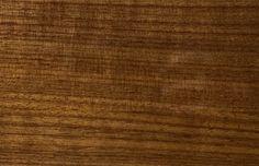 Holz - H900 Nuss. Holz ist ein echter Hingucker für jede Eingangstüre. Setze auf herausragende Qualität und exklusives Design deiner Haustüre. Pieno® Türen jetzt auch bei Fenster-Schmidinger aus Gramastetten in Oberösterreich erhältlich.   #Doors #Eingangstüren #Holztüren #Holz
