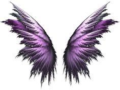 Photo by KimiVengenz Fairy Wings Drawing, Angel Drawing, Wing Tattoo Designs, Owl Tattoo Design, Angel Wings Png, Pink Polka Dots Wallpaper, Wings Wallpaper, Zentangle, Diy Wedding Backdrop