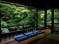 green flux (Rurikou-in temple, Kyoto) : by Marser