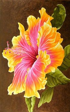 The Pink Hibiscus - Oils over Acrylic Hibiscus Flowers, Exotic Flowers, Amazing Flowers, Beautiful Flowers, Watercolor Flowers, Watercolor Paintings, Tropical Art, Fabric Painting, Flower Art
