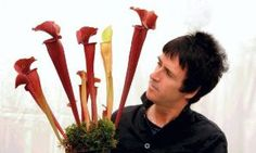 Vegan Johnny Marr meets the carnivorous plant named after him   Manchester Evening News - menmedia.co.uk