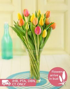Buy or Send buy this beautiful bouquet of 10 or 20 mixed tulips and receive a FREE vase, sent this gift to anyone celebrating their birthday or anniversary. Vase may vary in South Africa. | Item Code DS014