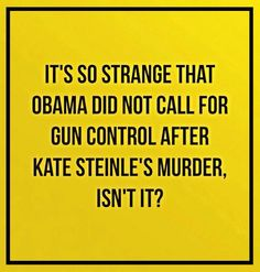 It's so strange that Obama didn't cal for gun control after Kate Steinle's murder, isn't it?