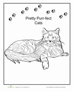 maine coon coloring page
