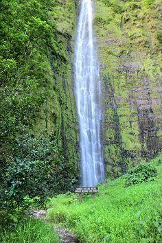 400 Foot Waimoku Falls Maui by Pierre Leclerc Photography