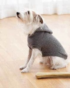 Keep your dog warm this winter by knitting him a cute little hooded dog coat. Using Bernat Super Value you can make this with a free knitting pattern.
