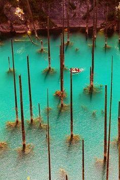 Lake Kaindy, Kazakhstan. The teal waters are illuminating. #myperfectPANDORAsummer @PANDORA