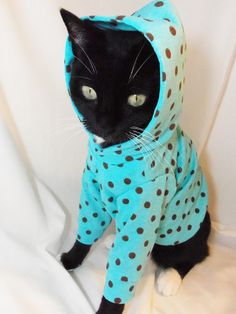 New CoolCats Turquoise and Brown Polkadot Knit Hoodie for Cats available on Etsy, $22.95