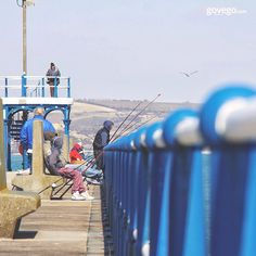 Balık tutmayı çok sevenler bu pazar da dışarıda olacak mı? Biliyoruz soğuk size işlemez! :))  ----------------- govego.com