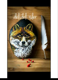 I love this little Fox. . @delideli.isler