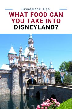 Disneyland Food in the restaurants and counter service is great. But it can be expensive. Find out what food you can take into Disneyland and what will get taken away at security.
