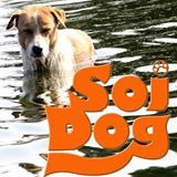 Soi Dog Foundation is organizing a global fundraising event next year, to run throughout the whole of 2014. This is something we can all do together. By being part of this team YOU can help build the Hanako hospital which will provide the best possible care to the dogs and cats of Thailand . All money raised will all make a difference!!! Please check out our Facebook page :https://www.facebook.com/pages/Soi-Dog-Challenge-The-World-2014/161398244053062