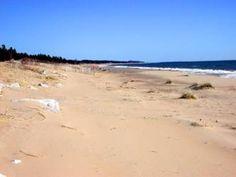Sand Dunes - Hiawatha National Forest (Lake Michigan Beach) - The Lake Michigan Trail Upper Peninsula of Michigan - Great Waters of Michigan