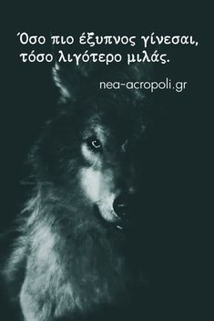 Wisdom Quotes, Book Quotes, Motivational Quotes, Funny Quotes, Funny Phrases, Greek Quotes, True Words, Picture Quotes, Slogan