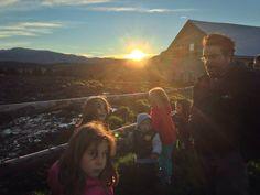 Alba col Malgaro, iniziativa per le famiglie e soprattutto per i più piccini... scoprire il risveglio della natura e le attività della malga.  #albeinmalga #alpecimbra #trentino #vacanzafamiglia #trentinodavivere