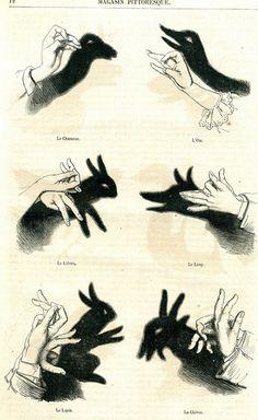 Hand Shadows I by seriykotik1970, via Flickr