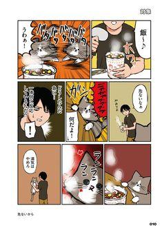 Cat Comics, Funny Cats, Comedy, Cute Animals, Manga, Anime, Fictional Characters, Twitter, Gatos