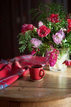 Zadužilo me i ovo jutro da se posvetim novom danu. Sweet Coffee, Little's Coffee, Coffee And Books, I Love Coffee, Coffee Cafe, Coffee Break, Morning Coffe, Good Morning, Morning Gif