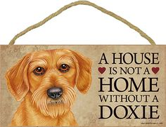 Dachshund Indoor Dog Breed Sign Plaque – A House Is Not A Home Wire Hair Available at www.DogLoverStore.com