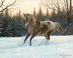 January 2014 ~ Lang.com desktop wallpapers - Horses in the Mist