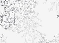 Gray Bouquet by Sanziana Toma - Discreet floral pattern with a botanical feeling, sketched motifs in different tones of gray, pleasant and relaxing. Inspired