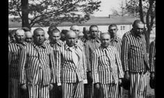 Database of Nazi SS Commanders and Guards| The names of Nazi SS commanders and guards at the Auschwitz death camp in German-occupied Poland have been put online by Poland's Institute of National Remembrance (INR). The information is based on data from archives in Poland, Germany, Austria, the United States. There are about 9,680 names, nearly all German, on the Auschwitz garrison list, some with photographs attached. #Auschwitz #INR #history #familyhistory #familytree #genealogy