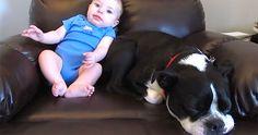 Este bebé se hace caca en su pijama atención a la reacción del perro hilarante! #viral