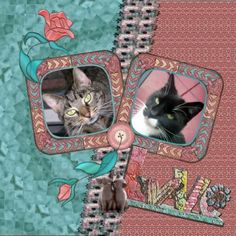 February 2016 Impromptu Challenge by Dawn Hi Dawn , finaly here my page – Feb.2016 – Love thanks for the fun and template to play with. I used Vicki her loving TWO_Feb16_SL_Elements , thanks Vicki. Shadowed it a bit pict. by me from our cats Mew and Bandit