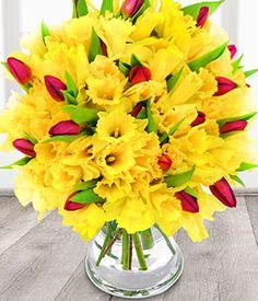 Spring Burst -Eflorist Flowers